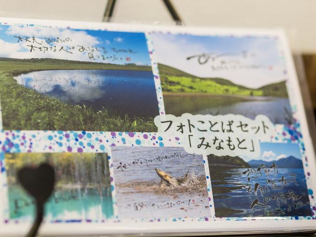 海蒼2.jpg